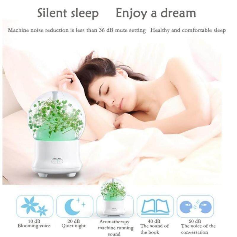 leegoal Ultrasonic Aromatherapy Essential Oil Diffuser AromaDiffuser Cool Mist Humidifier Preserved Fresh Flower-UK PLUG   - intl Singapore