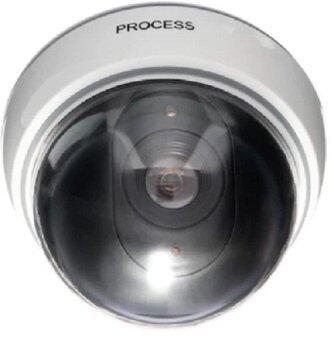 Blinking LED Realistic Dummy Security Camera Cam