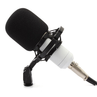 BM800 Condenser Microphone Recording With Shock Mount Kit (White)