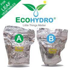 Buy 2Kg LEAFY Fertilizer AB Hydroponic Nutrients Solutions DIY Dry Crystal  EcoHydro Baja 肥料 Malaysia