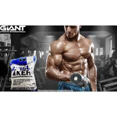 2f4eb778 store sale 13: Teknik Giant Sports Muscle Maker Mass Gainer Protein ...