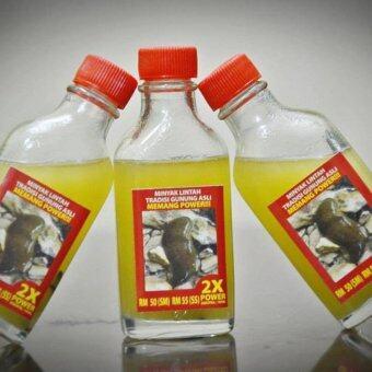 minyak lintah gunung asli lazada malaysia