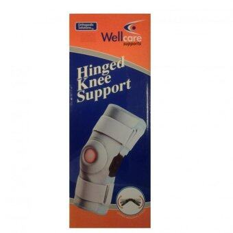 Wellcare Support Hinged Knee Support (Grey)
