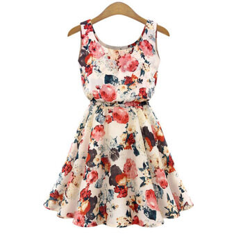 Hequ Collar Sleeveless Floral Print Chiffon Dress (Apricot)