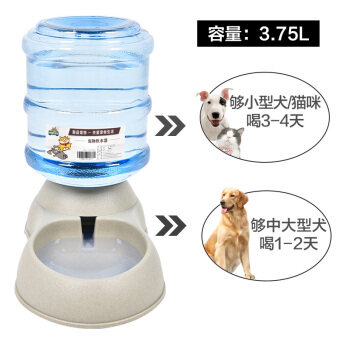 Food Box cat video timing pet dog automatic feeder drinking machinedog Teddy pet supplies drinking water is