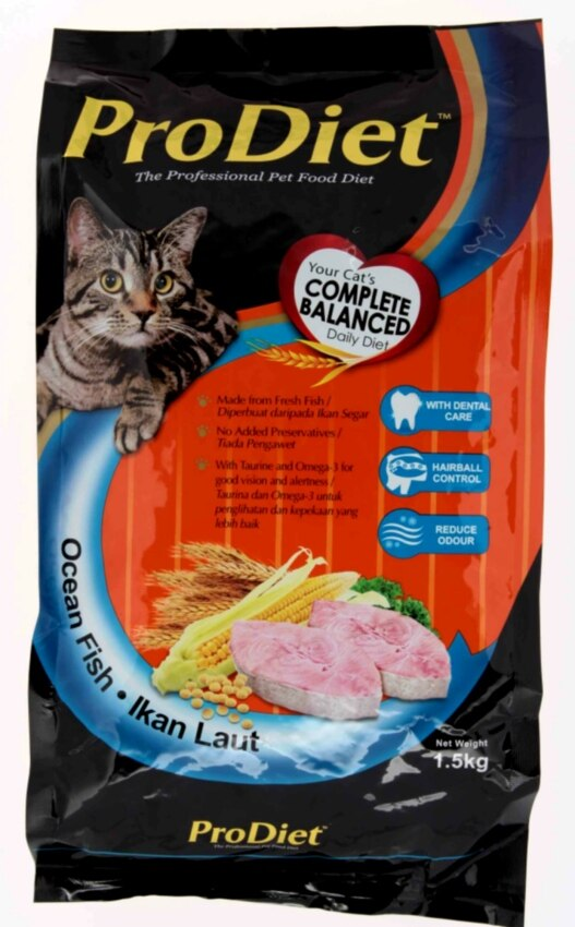 Top Dry Cat Foods Reviews For Adult Felines
