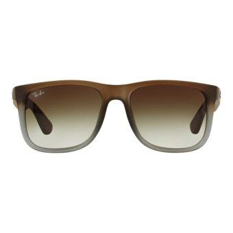66b98f219f8 Ray Ban Liteforce Polarized P3 Lens Wayfarer