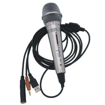 Can i use a karaoke microphone on my computer