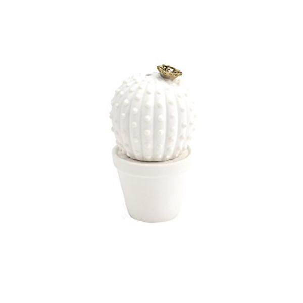 Tupperware Salt & Pepper Shaker Sets Hallmark Home Cactus Salt and Pepper Set - intl