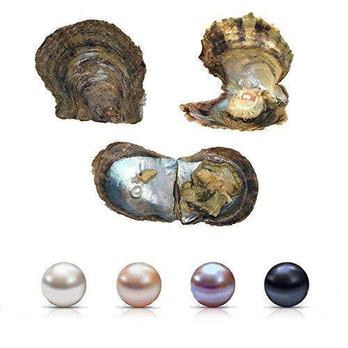 Mutiara Air Asin Oyster, 4 Pcs Keinginan Cinta Air Asin Akoya Tiram Mutiara 6-7 Mm Mutiara Di Dalam untuk Membuat Perhiasan atau Kado Ulang Tahun- internasional