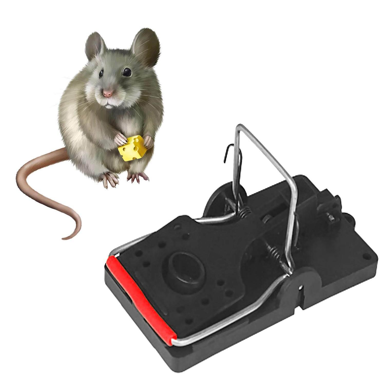 Hình ảnh 6 PCS Strong Humane Quick Rat Snap Trap Catcher Clip Mouse Mice Pest Killer Safe And Sanitary Large - intl