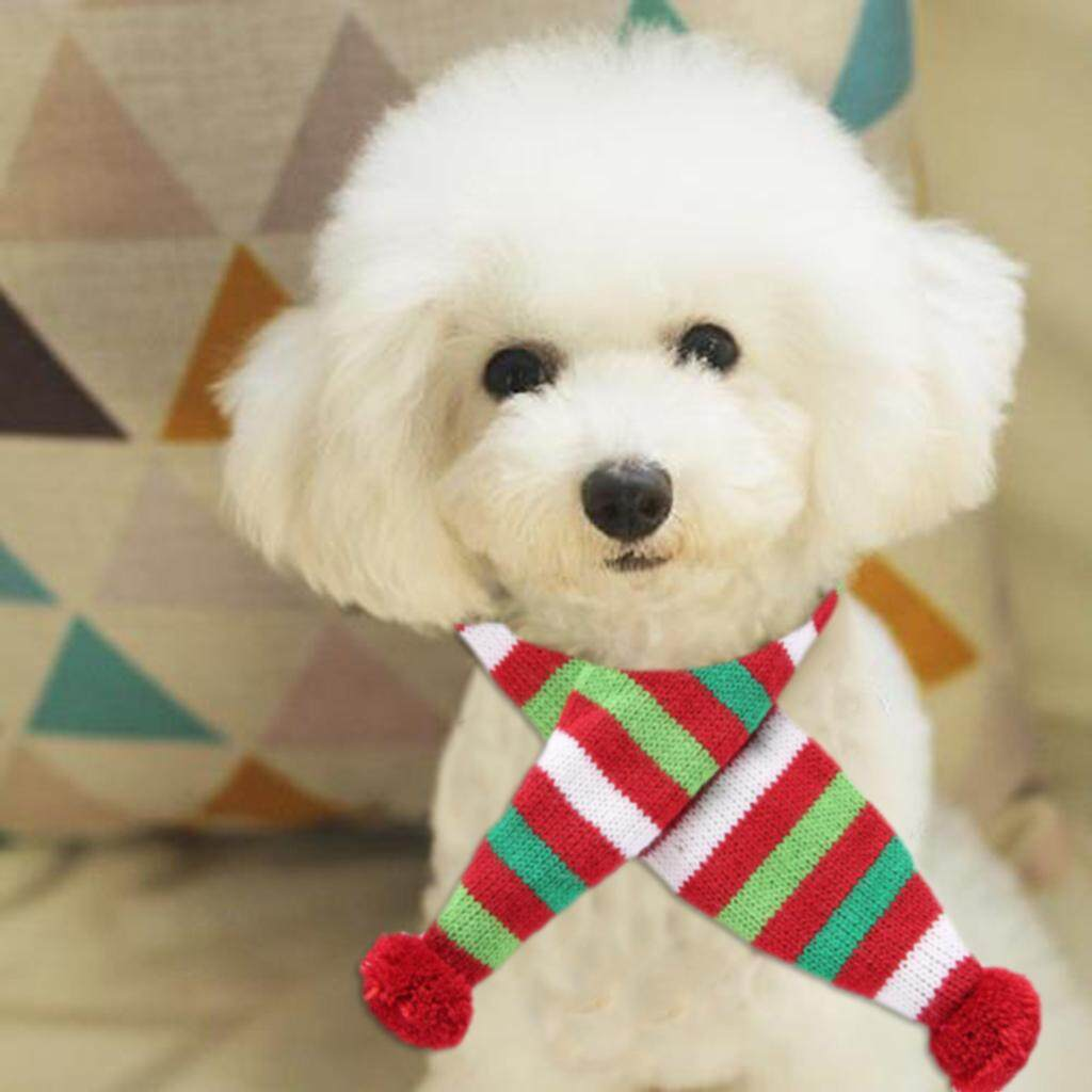 BolehDeals Christmas Theme Pet Dog Cat Scarf Neckerchief Pet Pom Pom Scarf Neck Decor M - intl