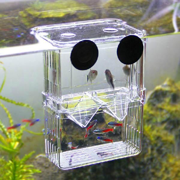 Clear Acrylic Fish Breeding Isolation Aquarium Incubator Box Young Fish - intl