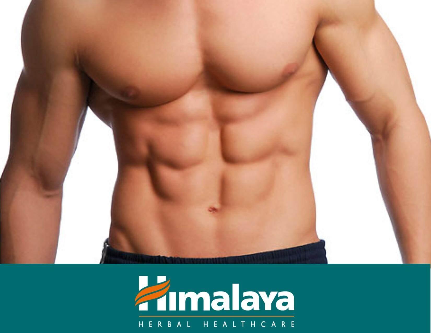 Himalaya Gokshura Men's Wellness - 60 Tablets