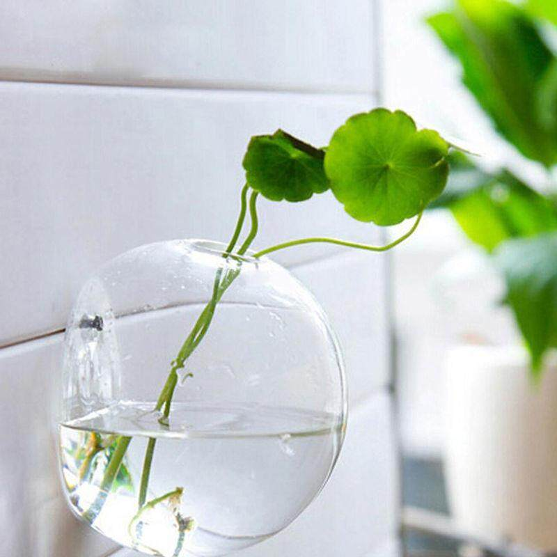 ... 2018 New Hanging Flower Pot Glass Ball Vase Terrarium Wall Fish Tank Aquarium Container Homw Decor ...