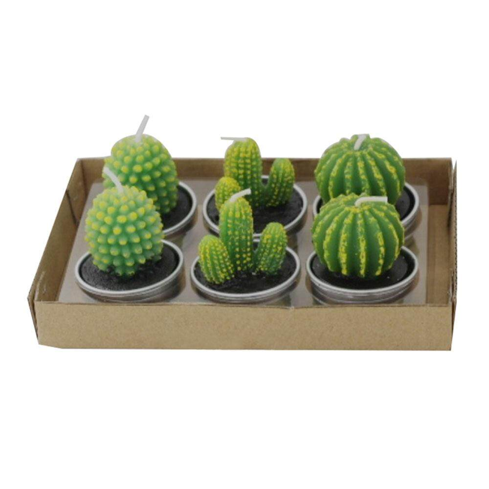 Womdee Cactus Tealight Candles Handmade Delicate Succulent Cactus Candles For Birthday Party Wedding Spa Home Decoration