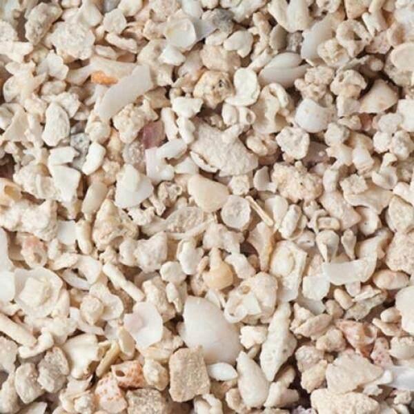 Carib Sea Florida Crushed Coral, 10 lb. - intl