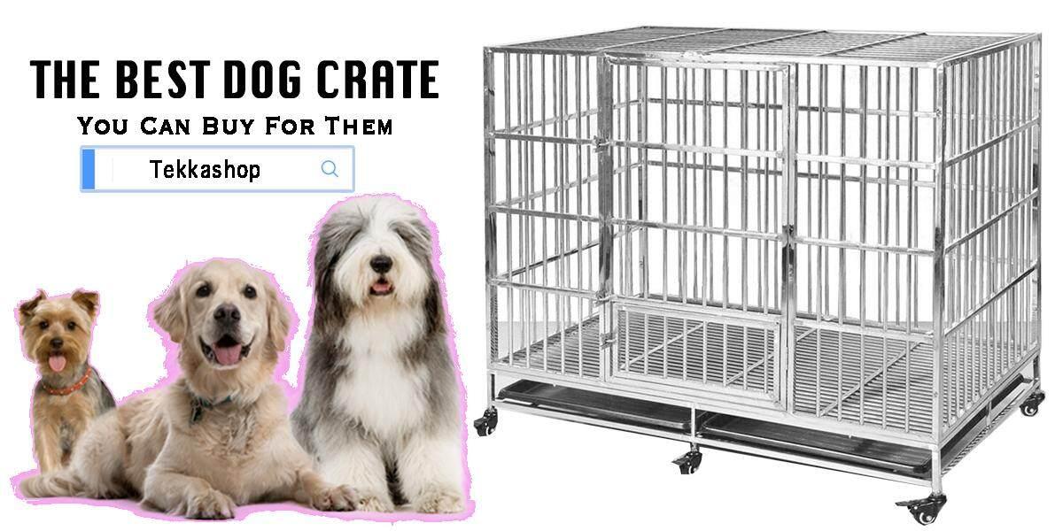 dogcage 1200x500.jpg