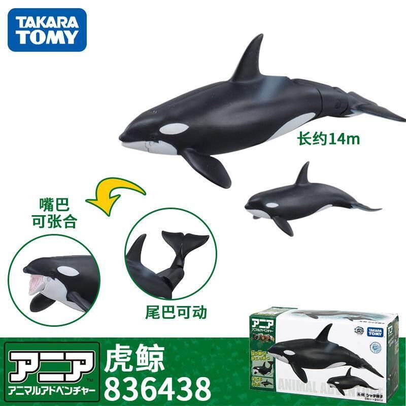 TOMY dan Lebih US Caan Elia Miniatur Hewan Mainan Model Dunia Bawah Laut Samudera Seri Paus