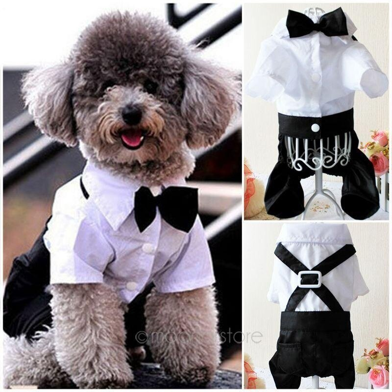 Groom Tuxedo Pets Puppy Clothes Overalls Dress Small Dog Cat Jumpsuit Hoodie By Wanmin56.