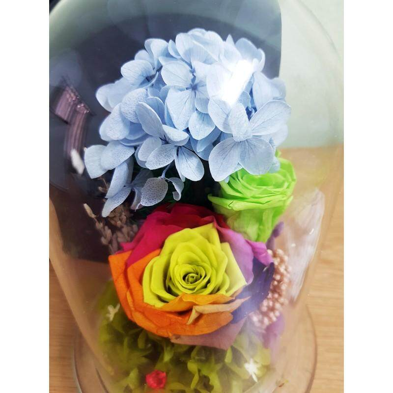 Colorful Preserved Fresh Flower Glass Gift Box