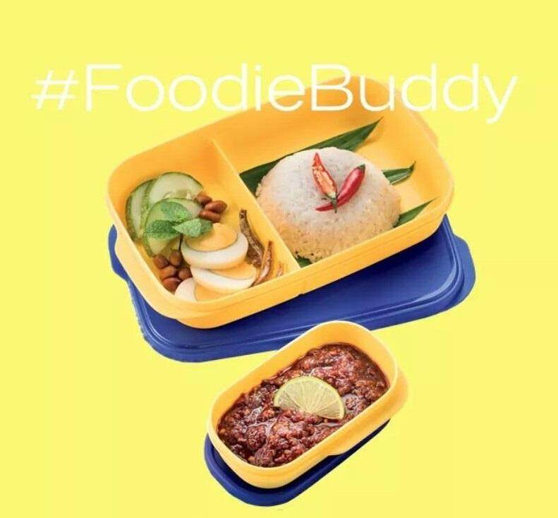 Tupperware FoodieBuddy (1) 560ml and (1) 120ml Set - Choose Color