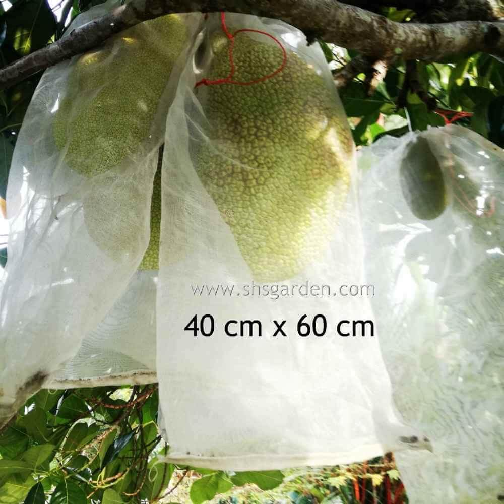 Large Garden Net (40x60cm) Nylon Fruit Mesh (bag) for Pest Control (Insects and animals) Stronger than Organza Bags