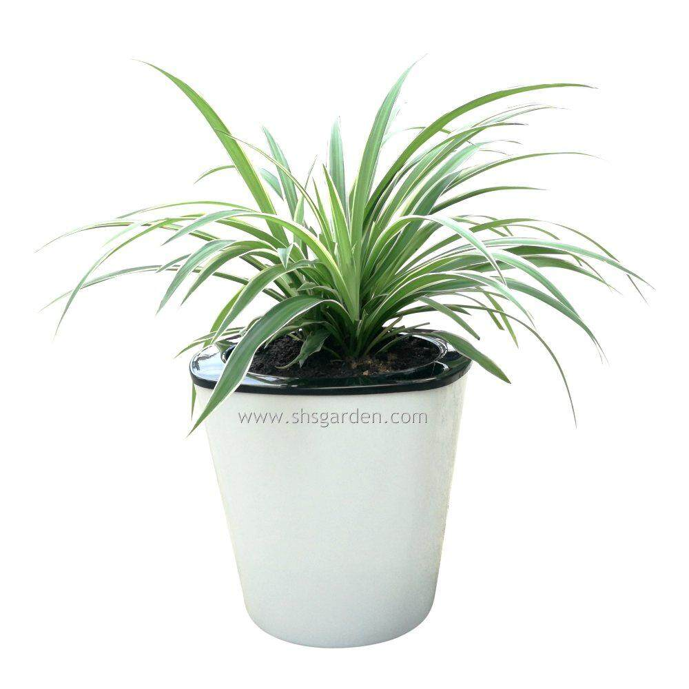 Medium Self watering Pot (HT18) Hydroponic Pot Plastic Flower Pot (White Square Medium Size)