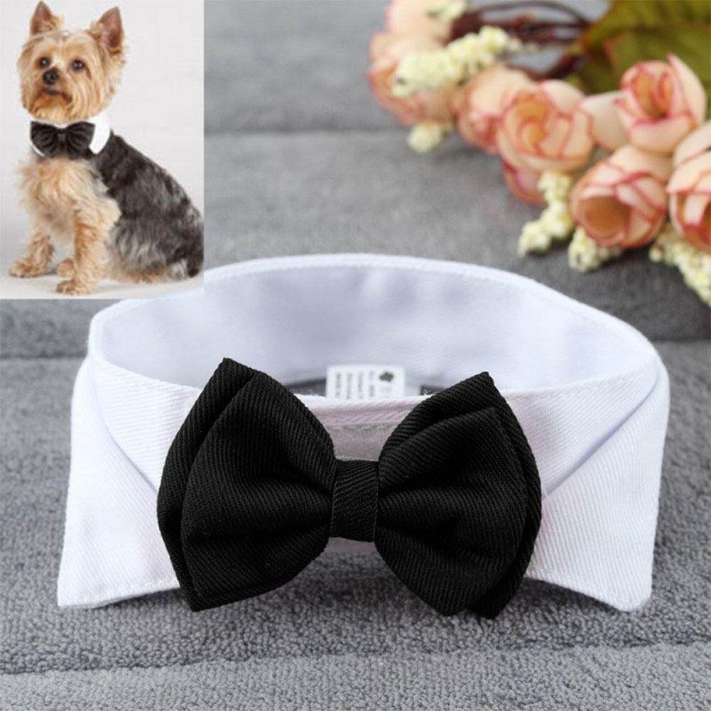 Big House Fashion Adjustable Bow Tie Cute Collar Necktie Bowknot For Pet Dog Cat Wedding Decor Stype:white By Big House.
