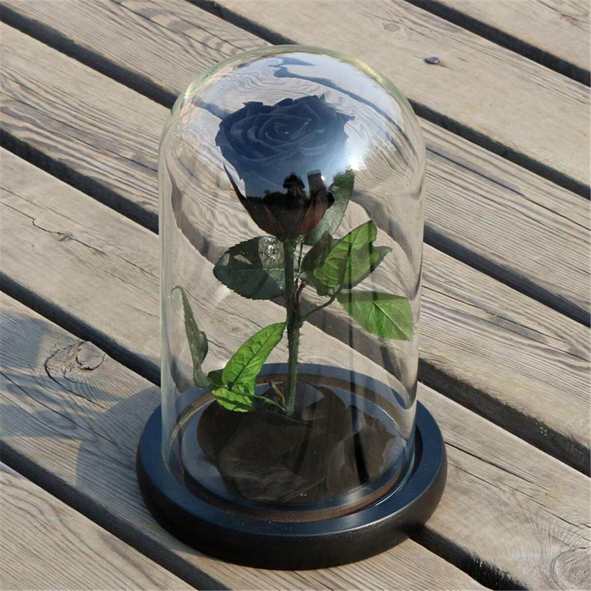(photo)Forever Rose Flower Festive Preserved Immortal Fresh Rose in Glass Unique Gifts # Black