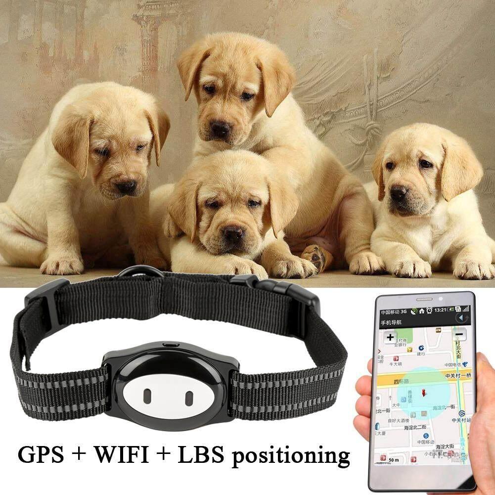 Real Time Pet Gps Pelacak Kerah Locator & Monitor Kegiatan Alat Pelacakan Untuk Anjing Dan Kucing By Minxin.