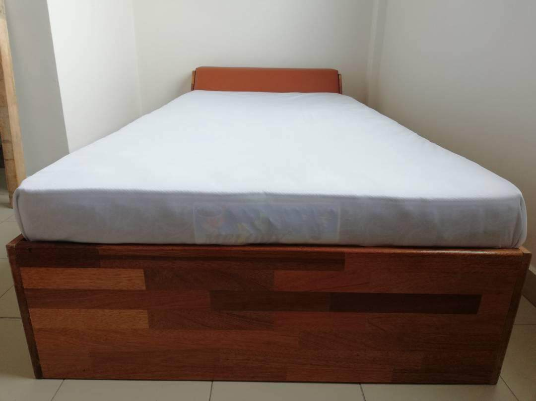 Ladubee Single Bed (Meranti Finger Joint)