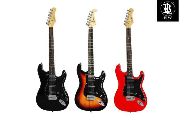 s10b electric guitar family.jpg