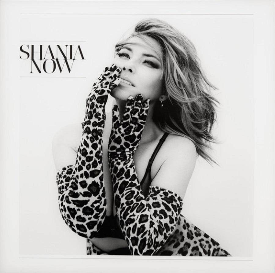 Shania Twain : Now (2lp) 180gms By Universal Music Malaysia.