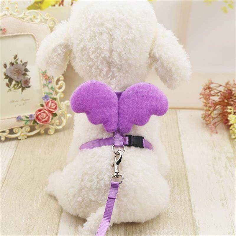 Habuy Pet Dog Collar Vest Harness And Leashes Set Cute Angel Wing Decorated Quick Release Dog Collar Chest Strap 2018 By Habuy.