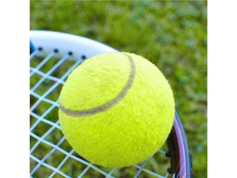 Hình ảnh Tennis Ball Sports Tournament Outdoor Fun Cricket Beach Dog Activity Game Toy - intl