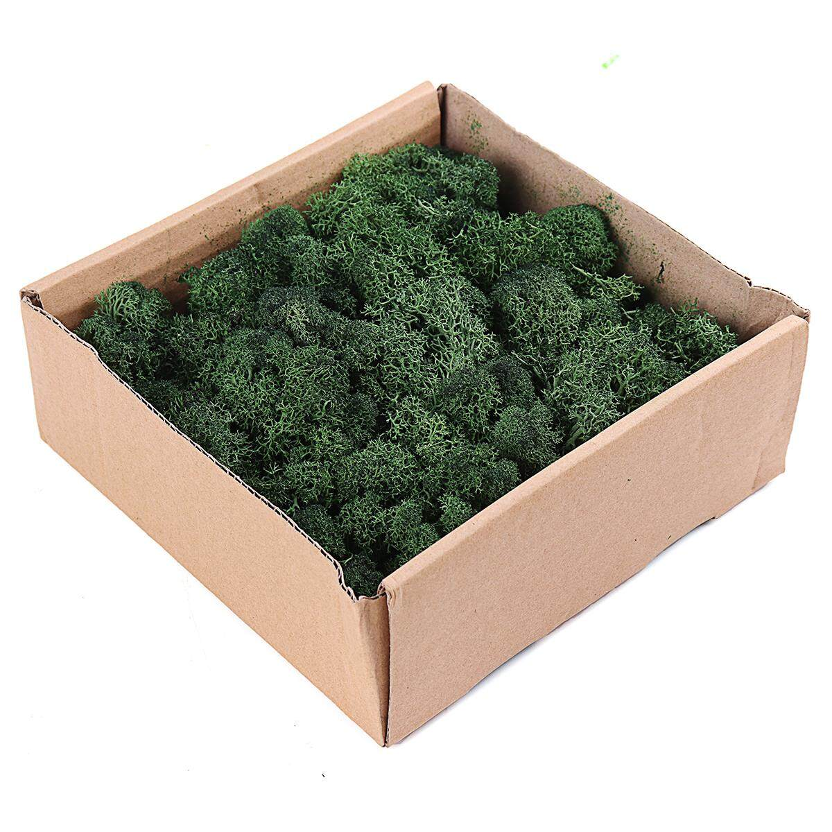 Natural Norwegian Reindeer Moss Preserved Dried Craft Flower Stamen Decor 200g