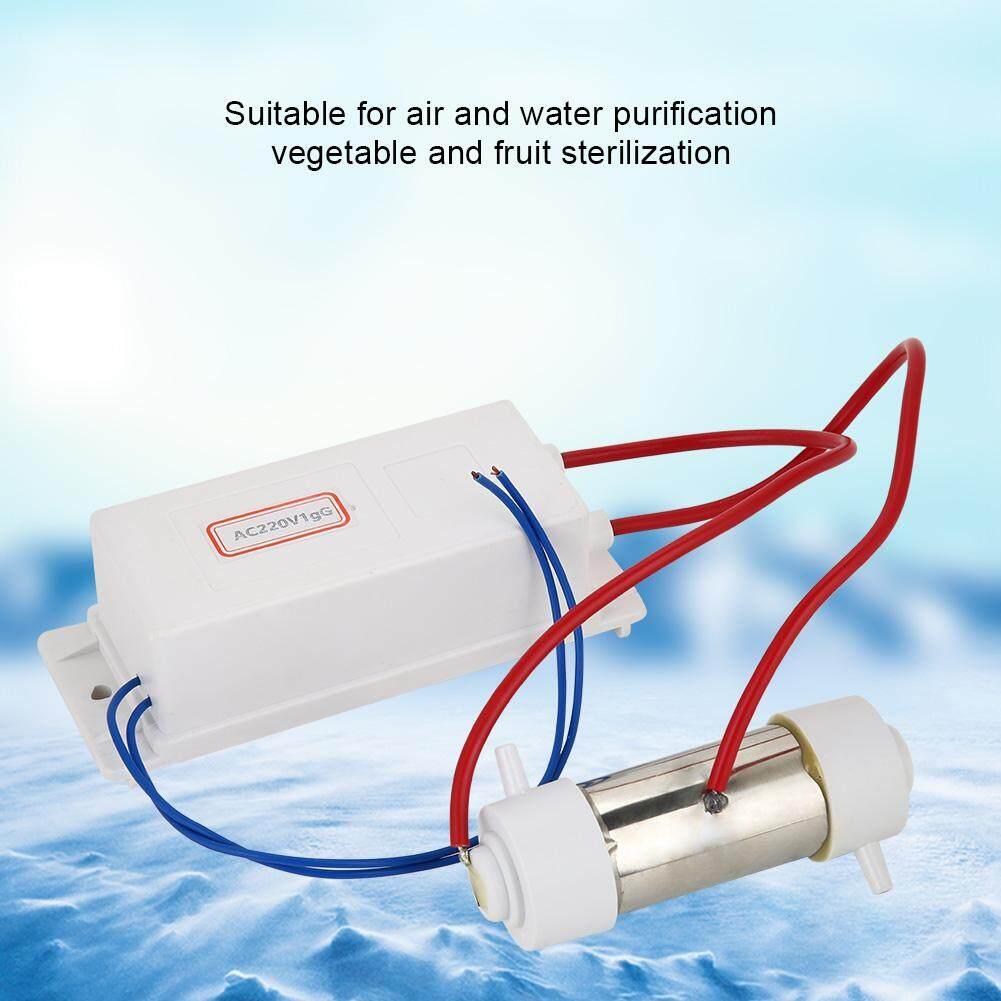Hình ảnh Generator Ionizer Air Water Purifier Vegetable Fruit Sterilization Machine (1g)
