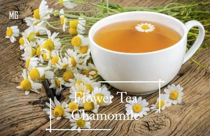 *Easy* German Chamomile seeds - 50 seed