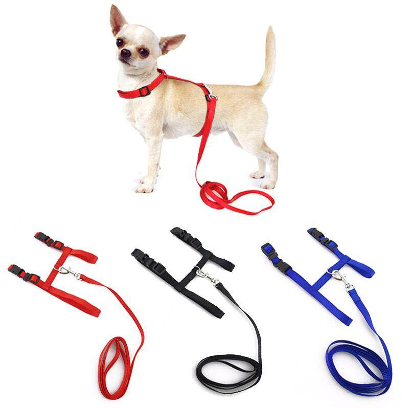 3 Pcs Adjustable Pet Traction Belt Cat Dog Halter Dog Collar Small Pet Dog Harness And Leash Chihuahua 3 Colors Nylon By Rytain.