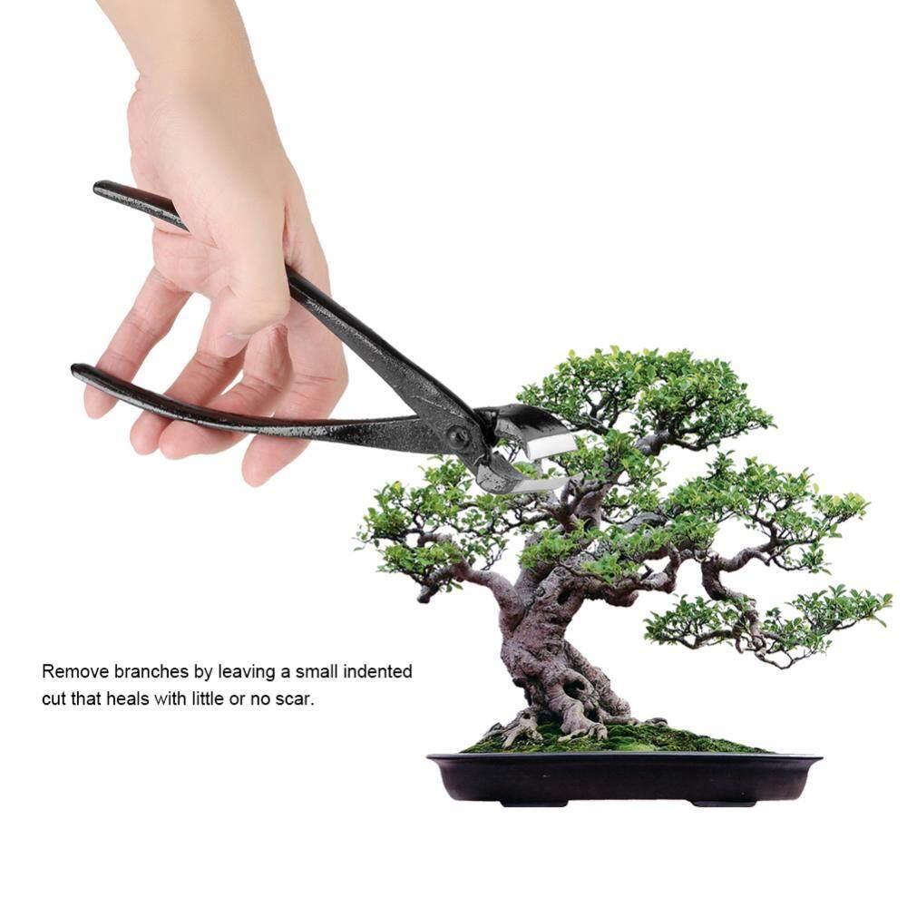 205mm Professional Garden Branch Cutter Beginner Bonsai Tools Zinc Alloy Round Edge - intl