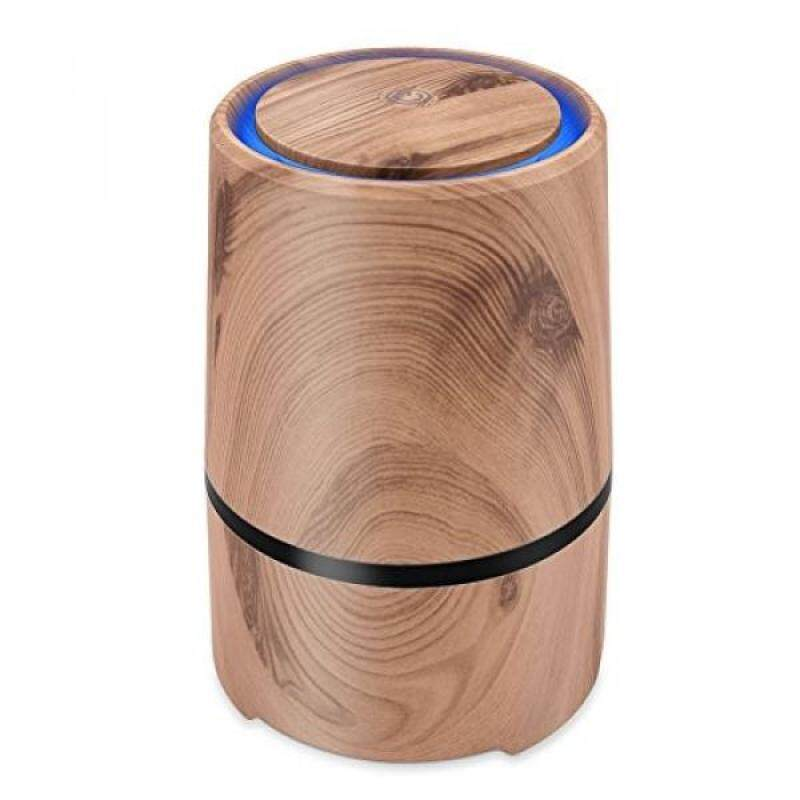 Desktop Air Cleaner with True HEPA Filter, Portable Air Purifier to Reduce Allergens Odors Dust Mold Germs Smoke for Home Room Office - SHD - intl Singapore