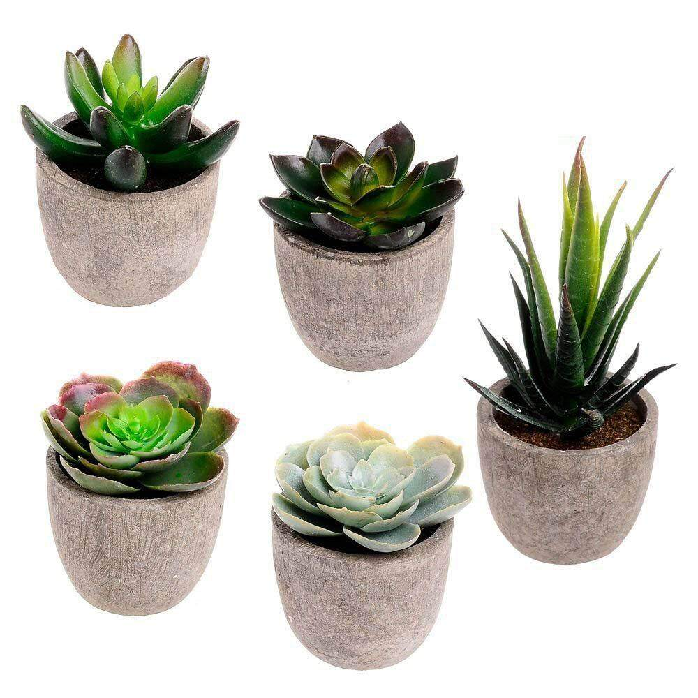 Assorted Decorative Faux Succulent Artificial Succulent Cactus Fake Cacti Plants with Gray Pots, Set of 5 Free Shipping