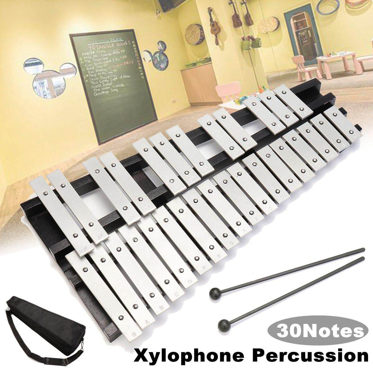 Retail Fleet 30 Glockenspiel Xylophone Vibraphone Foldable Percussion Mallets Bag Gift Intl