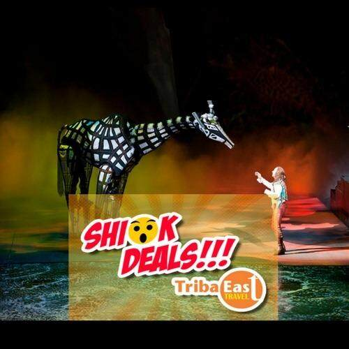Macao Dancing Water Show-Zone C-8.00pm (Child)