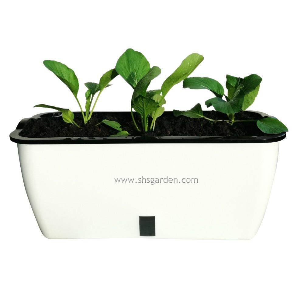 (3 sets) Large Self watering Pot Hydroponic Pot Don't Need to Water Everyday (SWPV) For Vegetable Plants or Flowers Planters FREE Sticky trap SHS Kebun