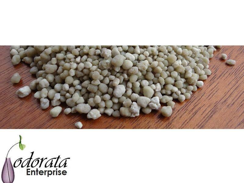 Odorata 100 g Baja Akar Larut Air Phosphorus (P) 18-46-0