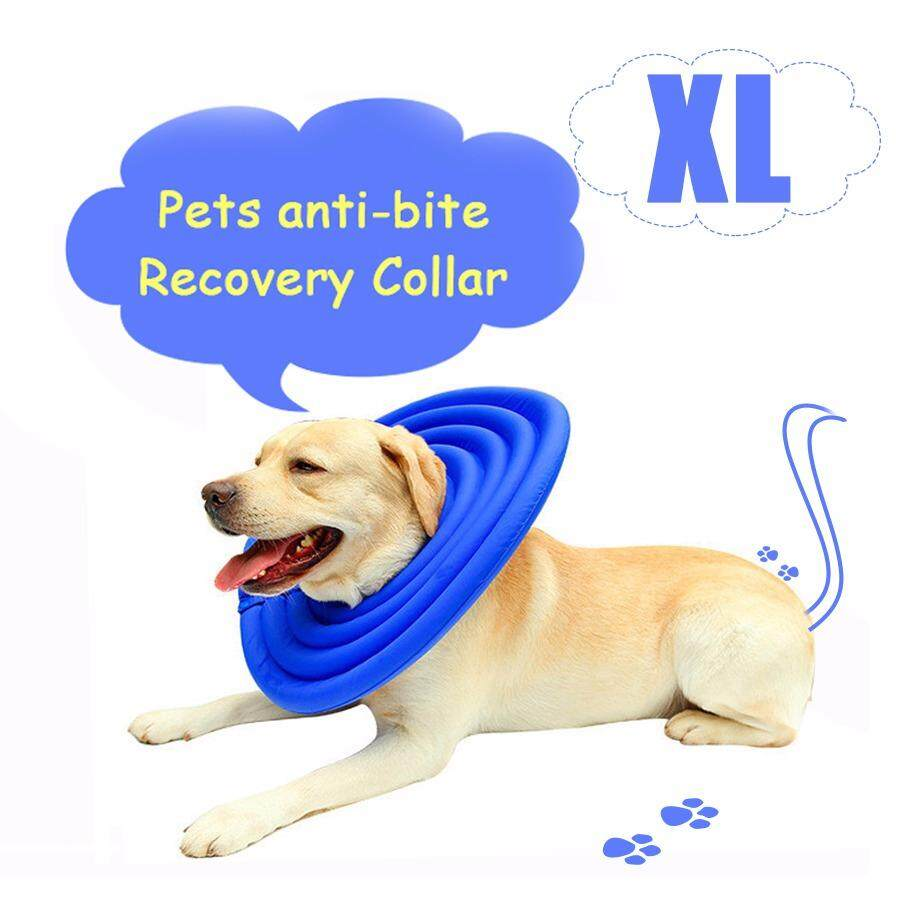 Protective Elizabethan Collar Dogs Cats Soft Pet Recovery E-Collar Adjustable Dog Collar Blue & Xl Size - Kwy12 By East Ear Living House.