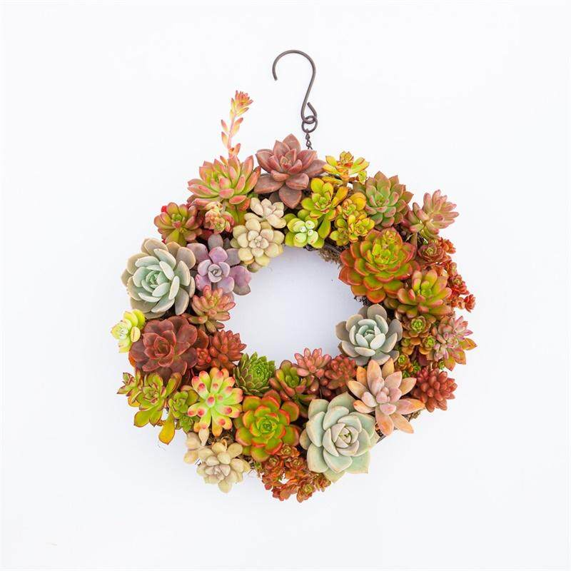 Iron Wire Wreath Frame Flowerpot Hanging Plant Holder for Succulent Plants (Large Size) Specification:Iron wreath flowerpot