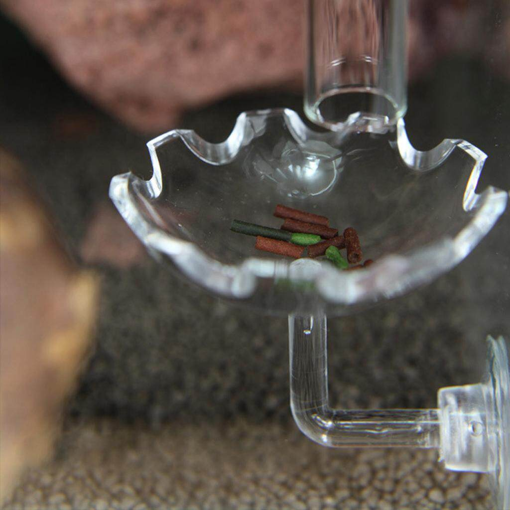 BolehDeals 3x Clear Aquatic Fish Tank Food Dish Bowl Shrimp Feeding Dish Tray for Shrimp Food